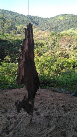 Belen de Los Andaquies Foto