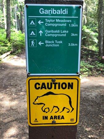 Garibaldi Lake Trail - 3