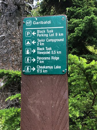 Garibaldi Lake Trail - 5
