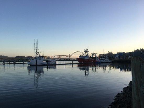 Local Ocean Seafoods 사진