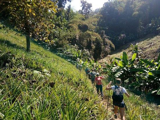 Beutiful nature during trekking