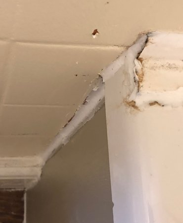 Norfolk Arms Hotel: Disgusting rotten wood mould and  broken tiles