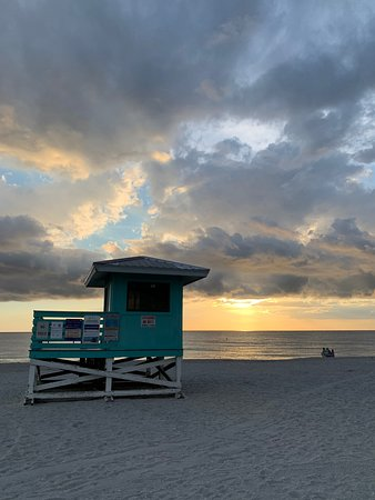 Venus Beach Florida >> Venice Beach 2019 All You Need To Know Before You Go With