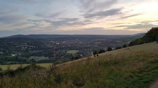 Box Hill, August 2019