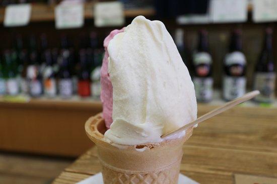 Wakasaya Ice Cream Garden: 酒粕
