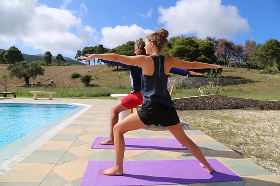 Wild Fig Retreat: daily yoga classes!