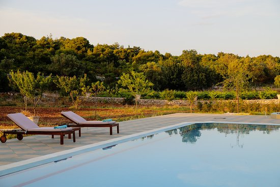 Wild Fig Retreat: relax poolside