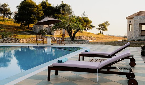 Wild Fig Retreat: more views of our pool