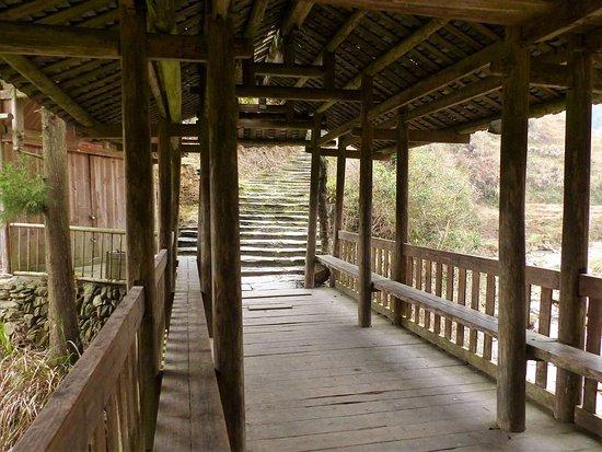 Long Sheng's Dragon Spine Rice Terraces: Zahlreiche gute Wege (1)
