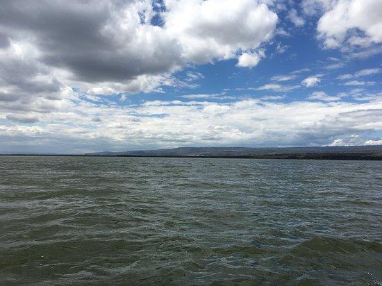 Full-Day Lake Nakuru National Park Private Tour from Nairobi: Lake Naivasha