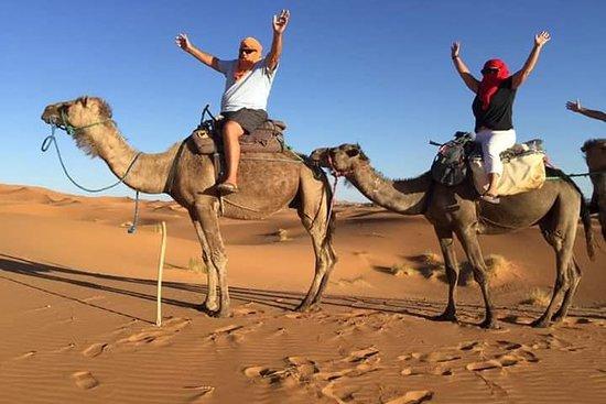 Merzouga Camel Tours