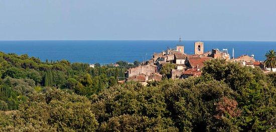 Biot, Γαλλία: vence.taxi Un service de chauffeur privé pour tous vos déplacements, nous assurons de nombreuses demandes : nous vous offrons un service haut de gamme.