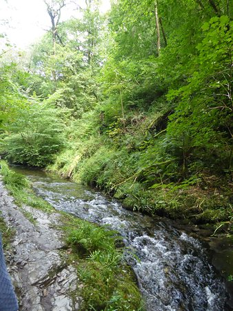 Lydford Gorge: The Lyd River gorge