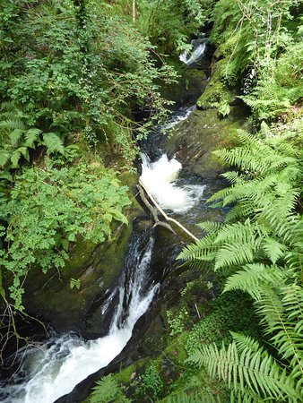 Lydford Gorge: Spectacular water features