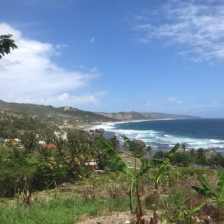 Barbados Exclusive Events and Tours