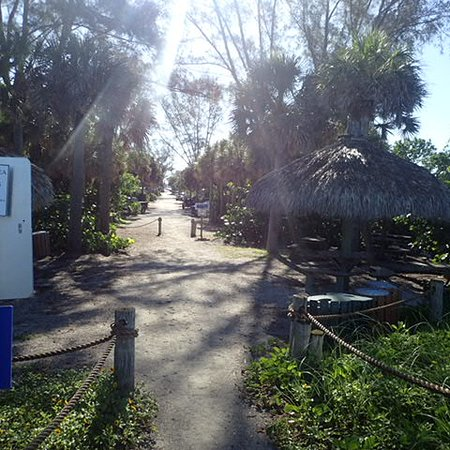 Path from Turtle Beach into Campground