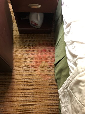 Red stain next to bed, probably candle wax b/c it matches the droplets on the dining table.