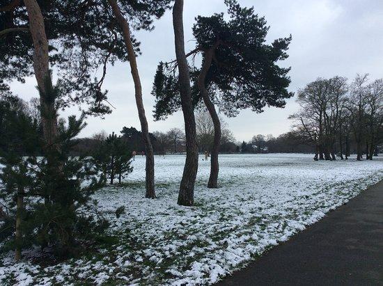 Cator Park