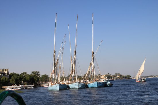 Luxor Temple and Karnak Temple Tour: Luxor 2014
