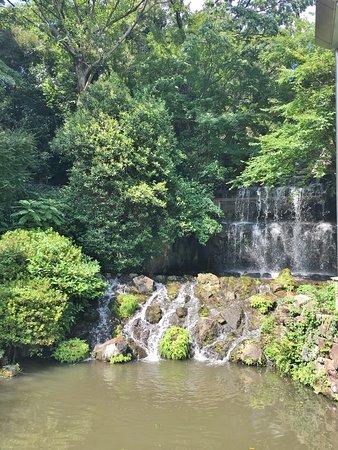 Hotel Chinzanso Tokyo Garden: 深い緑に囲まれた滝