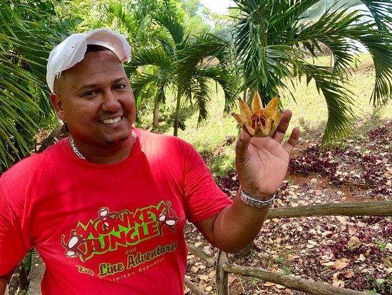 Dating mies Dominikaanisesta tasa vallasta