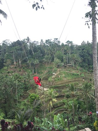 SWING - One of best activities in Bali to treat of your adrenaline