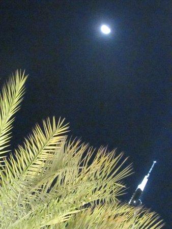"På toppen, Burj Khalifa - Nivåer 125 + 124 ""Allmän tillträde"": Tip of Burj Khalifa and the moon above the tree leaves."
