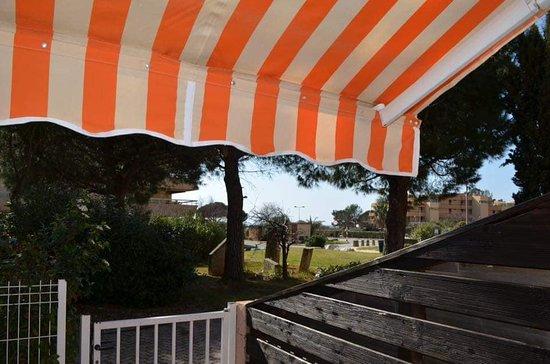 La Londe Les Maures, Γαλλία: Terrasse plein sud