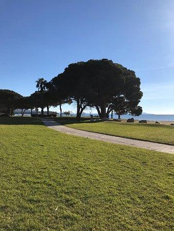 La Londe Les Maures, Γαλλία: A 2 mn à pieds de l'appartement la plage de l'argentière et sa pinède ombragée