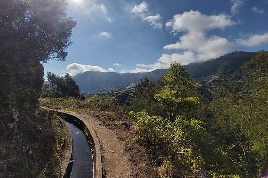 Madeira Free Spirit walks