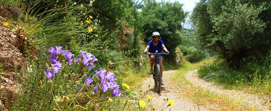 Cycling Creta