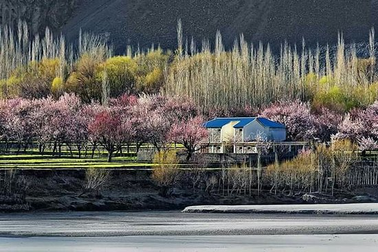 Spring season at Skardu 2019/2020 Travel Guide Pakistan Tourism Trip Vacation packages Northern Area's Of Pakistan.