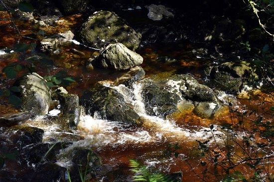 Ingleton Waterfalls Trail: .