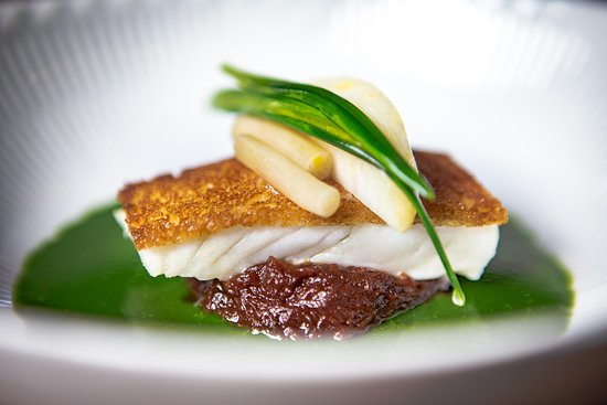 Formel B: Roasted turbot with braised ox cheek and parsley/garlic sauce