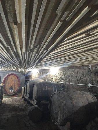 Gioi, Italie : La cantina in cui invecchia il nostro vino in botti di castagno per assicurare una produzione con metodi tradizionali e tecniche innovative e coerenti con la produzione di lotta integrata.