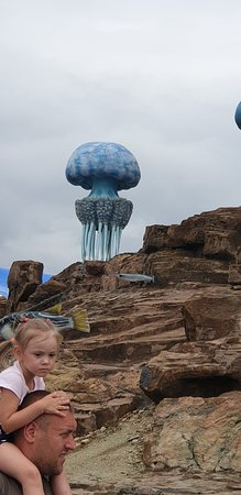 Primorskiy Oceanarium 사진