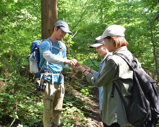 Shinanomachi Healing Forest