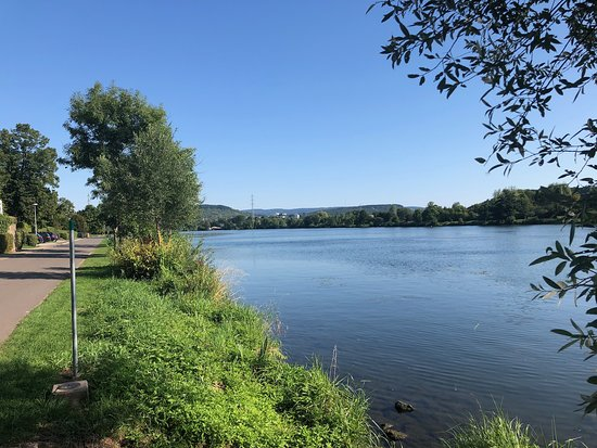 Igel Rheinland Pfalz