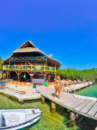 Natural pool wood deck - Ảnh của Isla Roots Hostel, Isla Tintipan - Tripadvisor