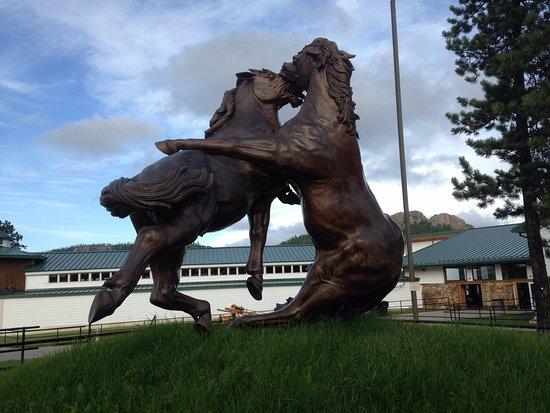Valokuva: Crazy Horse