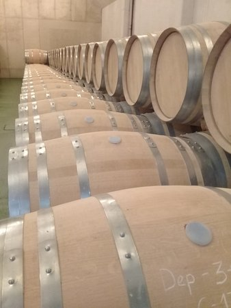New barrels waiting to be used.