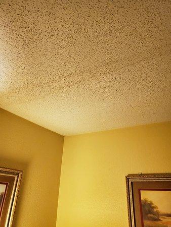 بست ويسترن تاربورو هوتل: Water stain on ceiling.