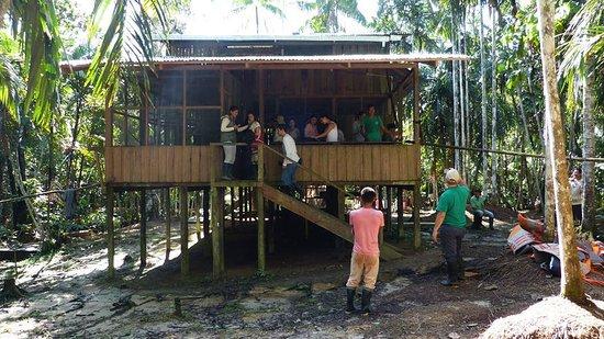 Loreto Mocagua, Colombia: Casa de los monos lugar previlegiado para pocos lugar unico para los animalitos donde tienen la opcion de disfrutar en su escenario, el vivir y convivir con las personas que son su segunda familia.