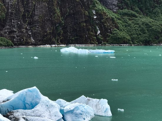Disney Wonder: View from Deck 4 of the floating icebergs as we headed up to the glacier.