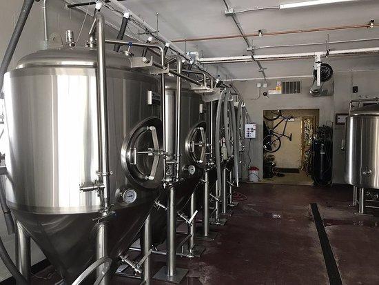 FrinGe Brewing