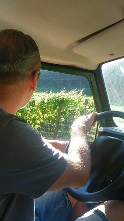 Il wine-tour con uno dei titolari