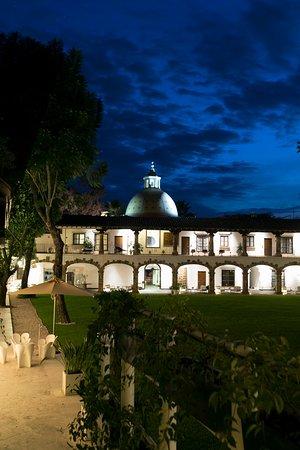 Jardín tropical de noche