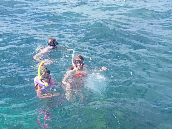 Edelweiss Keys Snorkeling and Eco Tours: Our catamaran is fun and very safe. Our families love how stable it is, especially for little ones out for their first experience.