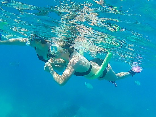 Edelweiss Keys Snorkeling and Eco Tours: We cater to family fun. Lots to do with snorkeling and sandbar fun.