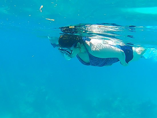 Edelweiss Keys Snorkeling and Eco Tours: Customer tours for your family.